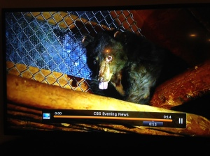 Cinder CBS screen grab
