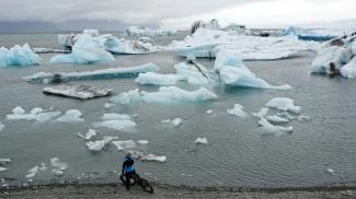 Liz icebergs