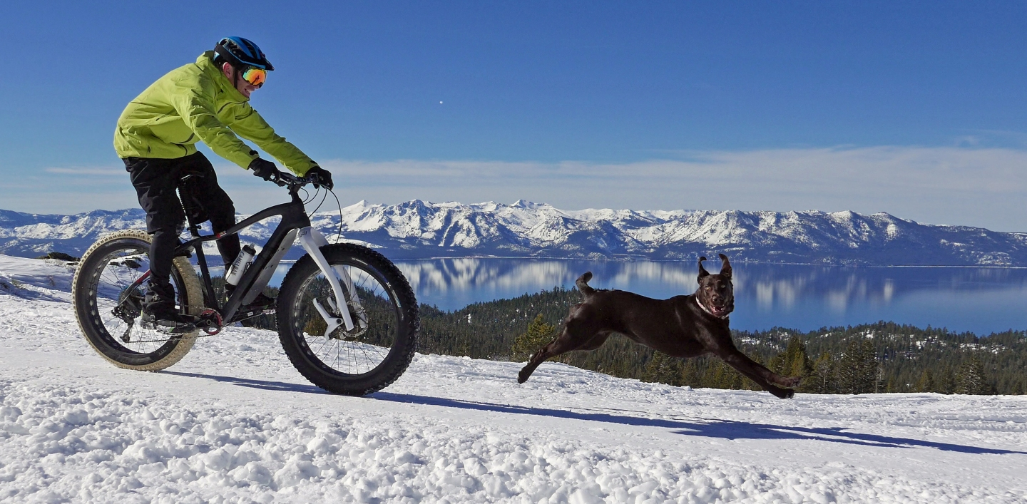 "Anthony Cupaiuolo and his dog, Emmie, above Lake Tahoe, as captured in ""Off the Beaten Path."""